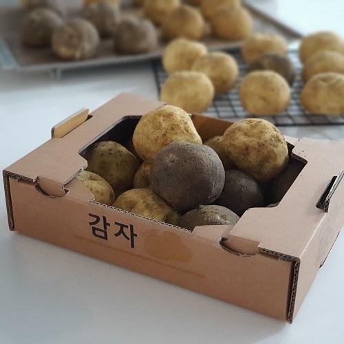 *7/7* 감자보다 맛있는 감자빵 만들기