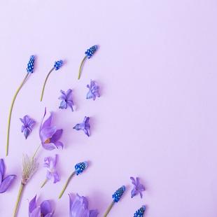 2/25 봄 내음 가득한 들꽃자수 놓인 손수건