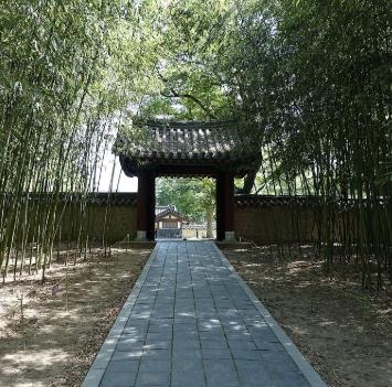 [숲 힐링투어] 나무가들려주는이야기, 화명수목원